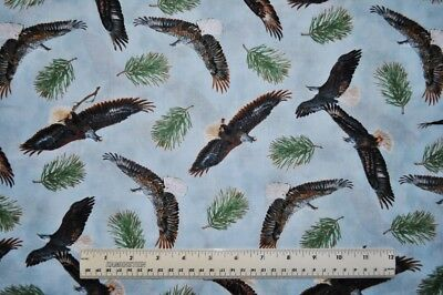 Falcons Hawks Fabric Birds of Prey ~ 100/% QSQ Cotton Sold BTY