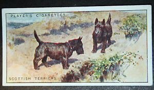 Scottish Terrier   Original   Vintage 1920039s Colour Card   VGC - Melbourne, Derbyshire, United Kingdom - Returns accepted Most purchases from business sellers are protected by the Consumer Contract Regulations 2013 which give you the right to cancel the purchase within 14 days after the day you receive the item. Find o - Melbourne, Derbyshire, United Kingdom