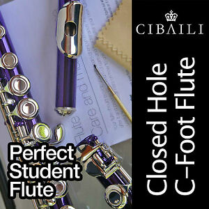 PURPLE-and-SILVER-C-foot-Flute-BRAND-NEW-Case-Perfect-For-School-Student