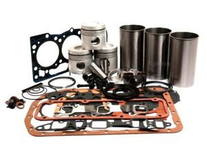 Bsd 333 Engine Motors Industrial Engine Overhaul Kit Fits Ford 4610 Tractors