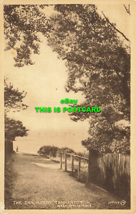 R585017 Tankerton. near Whitstable. The Shrubbery. Lane. The Library. Valentine