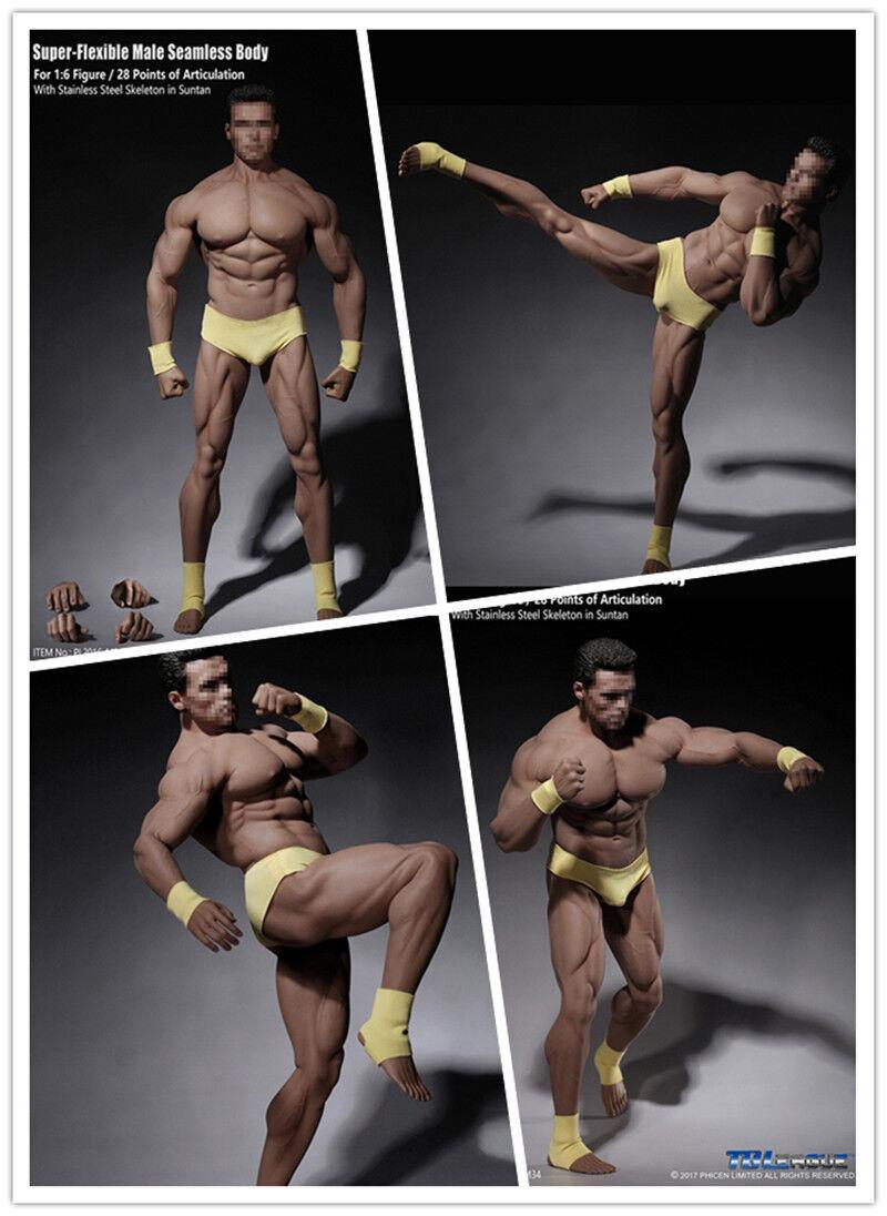 Tbleague PL2016-M34 1 6 súper Fuerte Flexible modelo de cuerpo transparente muscular masculino