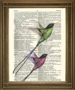 LONG-TAIL-BIRDS-ART-Romantic-Love-Gift-Wall-Hanging-on-Vintage-Dictionary-Page