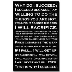 Why do i succeed inspirational quotes art silk poster for Modern house quotes