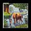 Craft-Buddy-30-x-30cm-Framed-Crystal-Art-Picture-Kit-Wolf-Elephant-Christmas thumbnail 25