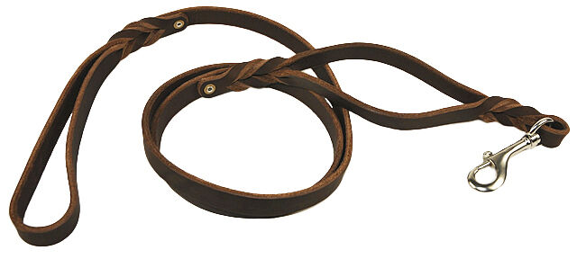 Dean & Tyler Braidy Bunch Leather Traffic Leash with Stainless Steel Hardware