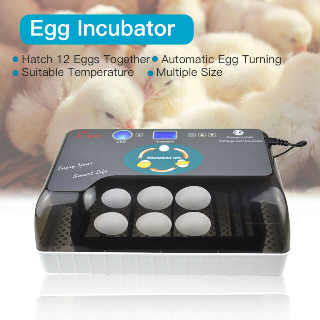 Fully Automatic Eggs Incubator LED Turning Temperature Control Duck Bird Hatcher