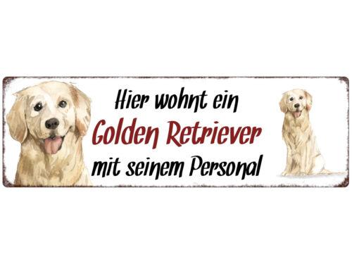 Interluxe escudo de metal-vive aquí un golden retriever-perro escudo