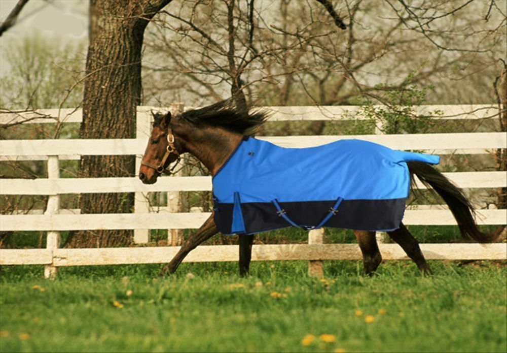 1680D TURNOUT WATERPROOF HORSE BLANKET  007 - Size of 75  or 78   supply quality product