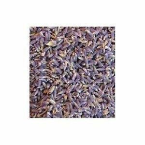 Details about Lavender Flower SELECT Herb 4 oz MOJO Wicca Witch Spell Pagan  Sleep Love Peace