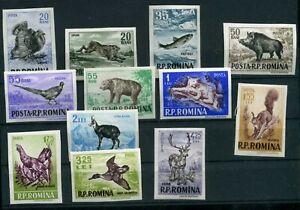 Rumänien MiNr. 1614-25 postfrisch MNH Wildtiere (E351