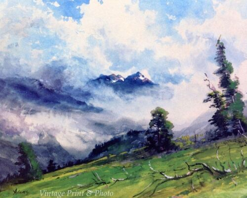 In the Colorado Mountains by Charles P Adams Art Peaks Mist Tree 8x10 Print 0597