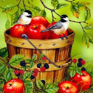 5D-DIY-Full-Drill-Diamond-Painting-Fruits-Birds-Cross-Stitch-Embroidery-Kit-AU