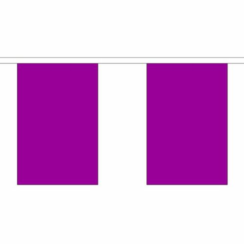 Purple Flag Bunting Polyester 3m 6m 9m Metre Length 10 20 30 Flags
