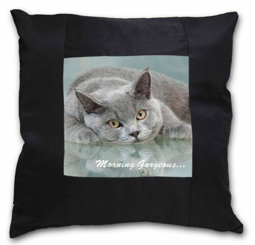 MG-11-CSB British Blue Cat /'Morning Gorgeous/' Black Border Satin Feel Cushion C
