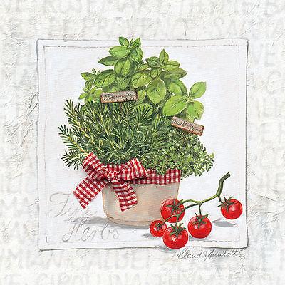 Claudia Ancilotti: Fine Garden Herbs Leinwand-Bild 20x20 Wandbild Kräuter Küche