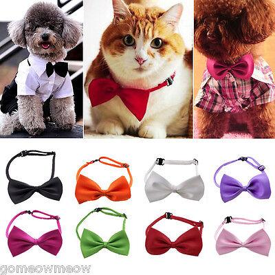 Cool Pet Dog Cat Handsome Adjustable Necktie Collar Bow Tie