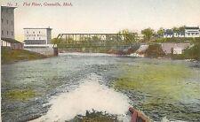 View on Flat River in Greenville MI Postcard
