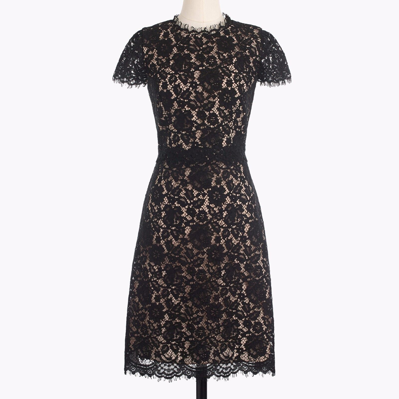 J.Crew Collection lace lace lace fit-and-flare dress - Size 0, 2, 4 NWT  220 618ef7