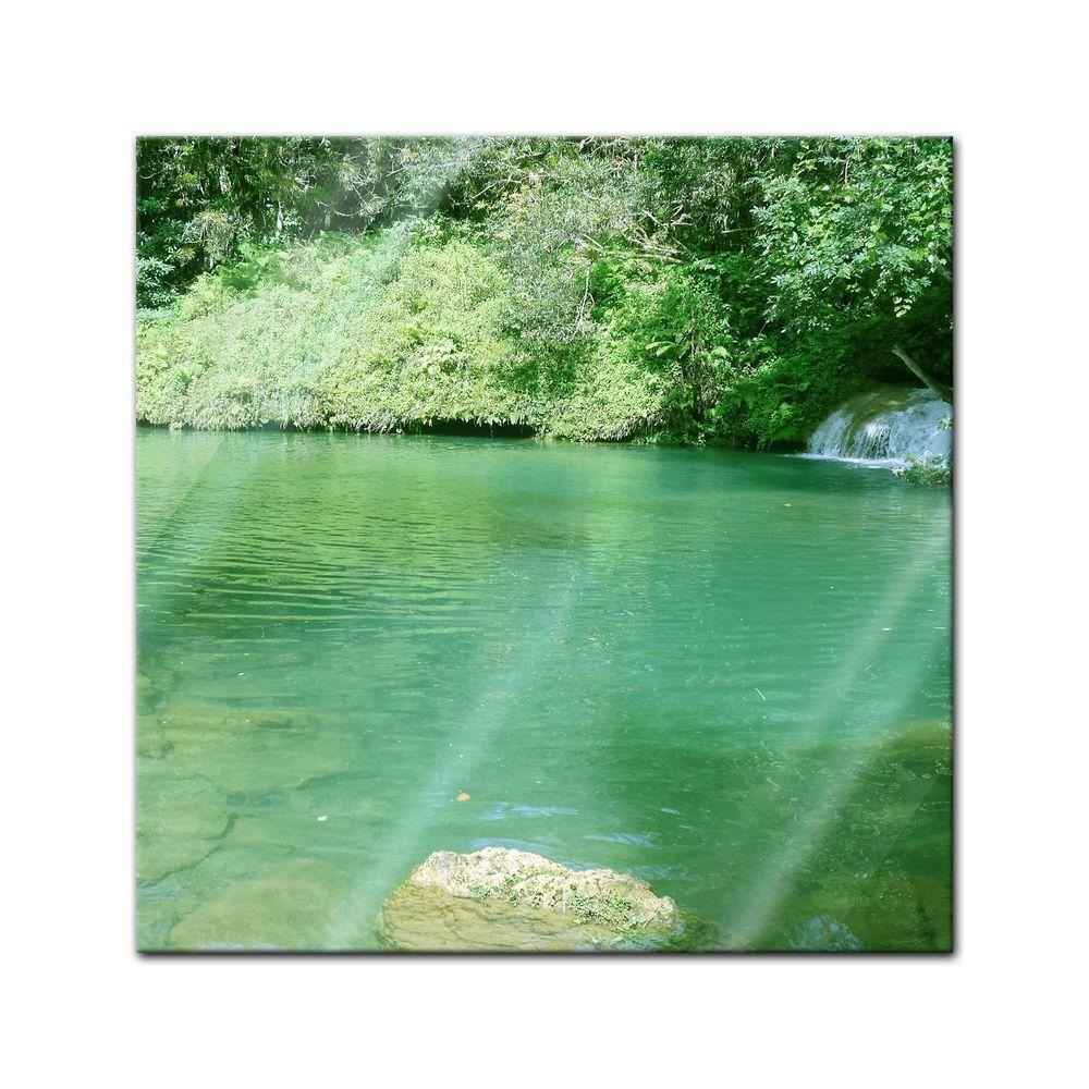 Glasbild - See im Dschungel