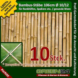 10 bambus st be als rankhilfe rank gitter st be f r. Black Bedroom Furniture Sets. Home Design Ideas
