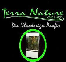 Dendrobaten Terrarium 40x40x40 cm Glas Terrarium Froschterrarium Glasterrarium