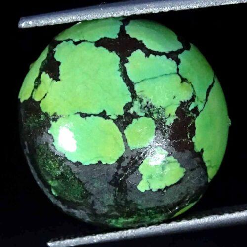 Natural Tibet Turquesa Redondas de cabujón Colección Piedra Suelta