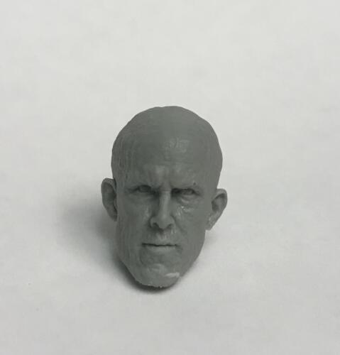 Marvel Legends ML Shrunk Hot Toys Ryan Reynolds Deadpool 1:12 Scale custom head