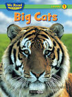 Big Cats by Bruce Johnson (Hardback, 2010)