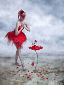 Abstract Ballerina Flower 5D Full drill Diamond Painting Embroidery Decor Z1208