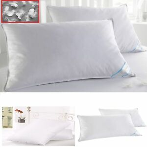 2-King-Size-Pillows-Goose-Down-Feathers-Bed-Set-Luxury-Pillows-Thread-Count-Cott