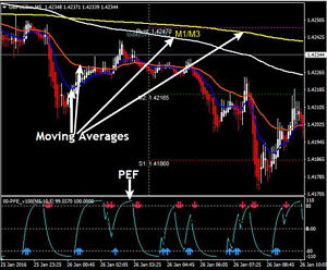 Forex high frequency trading signals indicator