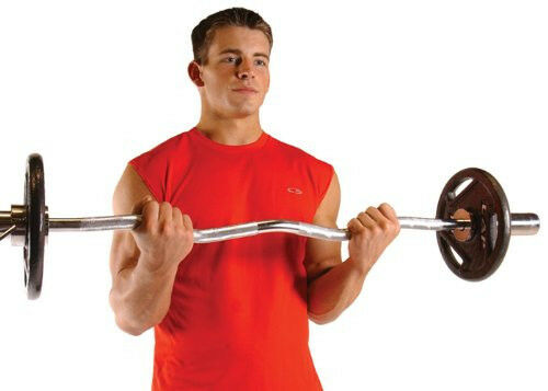 Cap Barbell Weight Bar 47-Inch Olympic Ez Curl Bar Gym Fitness Exercise Lifting