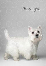 West Highland Terrier Boxed Thank You Notecards (6 folded blank cards)