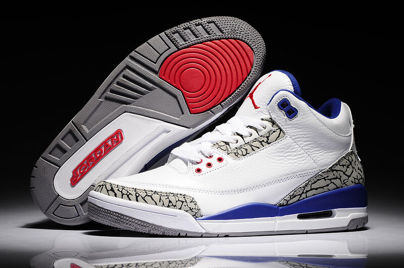 Air Jordan Retro 3 OG 88s True bluee
