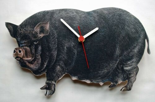 Vietnamien Pot Bellied Pig-Horloge ventru-OF16