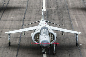Original-Royal-Navy-Sea-Harrier-A4-photograph-print