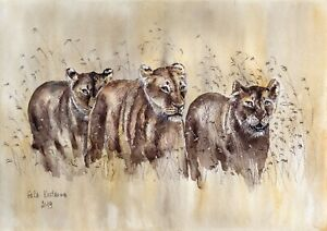 Lionesses-039-s-Hunt-original-watercolor-wildlife-landscape-painting-lion-savannah