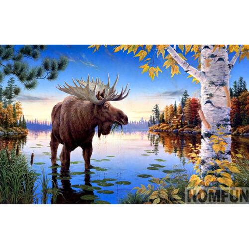 Amrican Moose 5D Diamond Painting DIY Full Drill Wall Decor 40*30cm