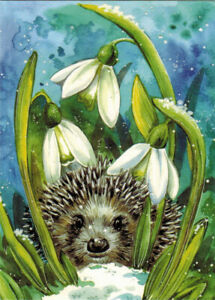 HEDGEHOG IS HIDING IN THE SNOWDROPS Modern Russian ...
