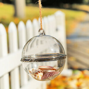 10-10cm-Bauble-Opening-Glass-Hanging-Vase-Ball-Sphere-wedding-event-plant-decor