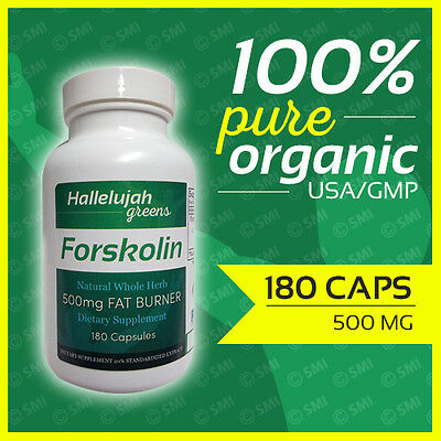 FORSKOLIN Coleus Forskohlii Weight Loss 20% Extract 500mg 180 Caps 3Month  Supply | eBay