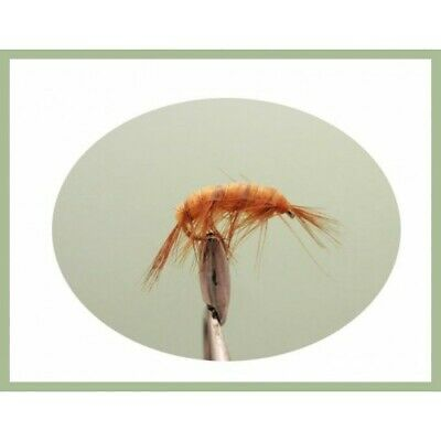 mixte 8//10 pêche à la mouche pack de 8 Goldhead Blanc Zonkers Trout Fishing Flies