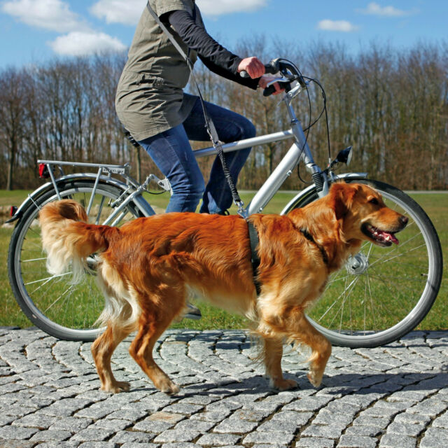1282 Trixie Dog Activity Jogging Or Bicycle Lead - Bike Or Running Lead OFFER