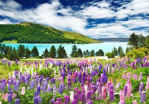 Lake Tekapo Spring Flowers Nz Full Wall Mural Photo Wallpaper Home