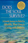 Does the Soul Survive?: A Jewish Journey to Belief in the Afterlife Past Lives and Living with Purpose by Rabbi Elie Kaplan Spitz (Paperback, 2002)