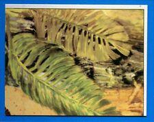 ANIMALI PREISTORICI - Panini 1975 - Figurina-Sticker n. 133 -New