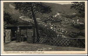 Schwarzburg-Thueringen-Ansichtskarte-1920-30-Trippsteinhaeuschen-Panorama-Blick