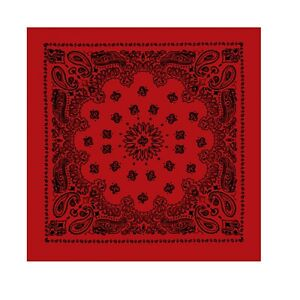 Red with Black 100/% Cotton 22 Inch Paisley Bandana