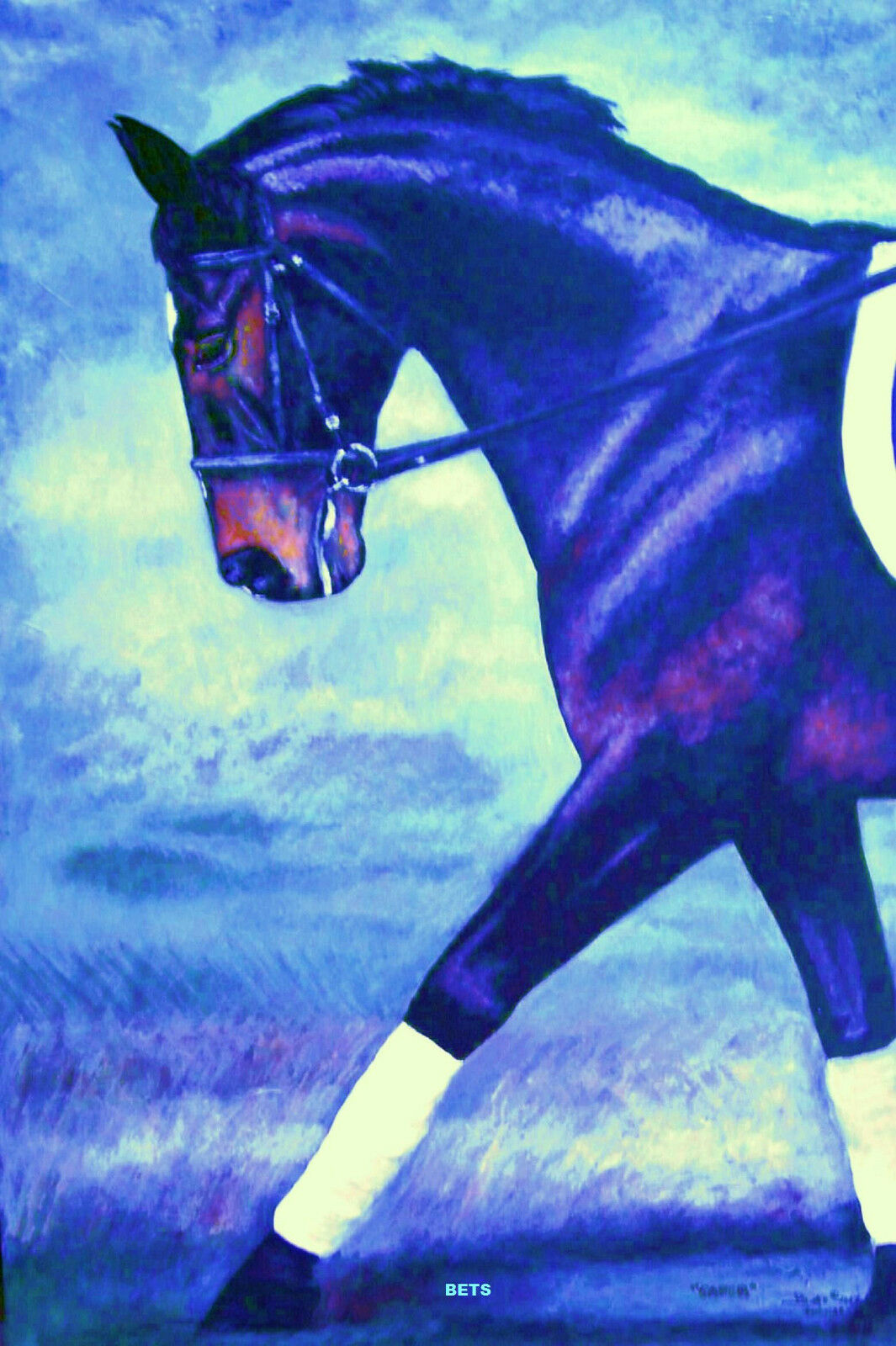 HORSE  PRINT Giclee DRESSAGE Art CAPER by artist BETS 6 COLORS print size 14 X 19  fashion mall